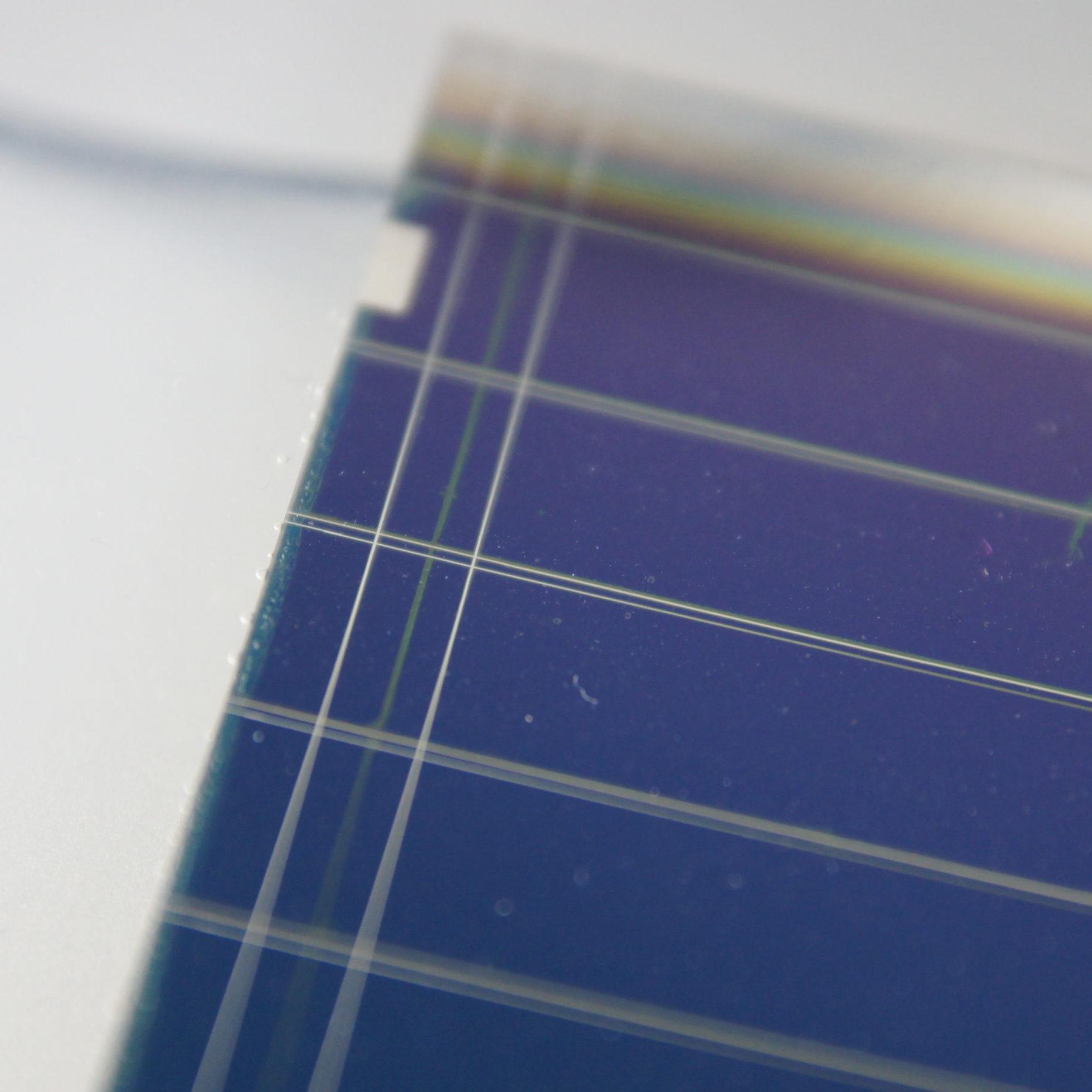 organic photovoltaic module